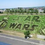 展望台から眺める田舎館村の巨大な田んぼアートをついに観てきた!!