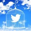諸事情でtwitterの過去のツイートを楽に全削除したい人にやり方教えます