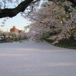 地方ブロガー兼作家になった|東京ではなく青森移住を選んだ4つの理由